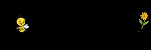 nisazet logo